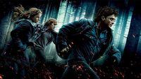 Tryskaj�ca krew i lataj�ce g�owy w zaskakuj�co brutalnej przer�bce Harry'ego Pottera