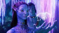 Avatar 2 wykorzysta³ do efektów specjalnych równie¿ dzieci i konie. Zobacz zdjêcia