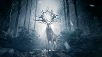 Cień i kość - premiera dobrze ocenianego serialu fantasy Netflixa
