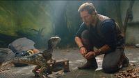 Re¿yser Jurassic World 3: Dominion próbuje wyt³umaczyæ fabu³ê filmu
