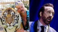 Nicolas Cage nie bêdzie tresowa³ tygrysów; Tiger King anulowany