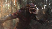 Znamy tytu� Predatora 5. Film ma dor�wna� orygina�owi